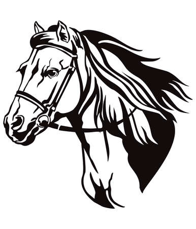 Decorative monochrome contour portrait of running horse in bridle looking in profile, vector illustration in black color isolated on white background. Image for logo, design and tattoo.