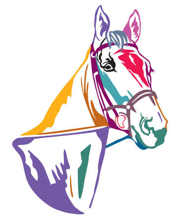 Colorful decorative contour portrait in profile of beautiful horse in  bridle, vector illustration in different colors isolated on white background. Image for logo, design and tattoo.