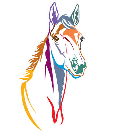 Colorful decorative contour portrait of beautiful foal, vector illustration in different colors isolated on white background. Image for logo, design and tattoo.