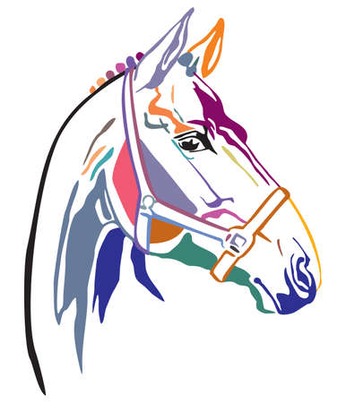 Colorful decorative contour portrait of beautiful racing horse in bridle looking in profile, vector illustration in different colors isolated on white background. Image for logo, design and tattoo. 向量圖像