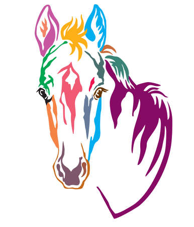 Colorful decorative contour portrait of pretty foal, vector illustration in different colors isolated on white background. Image for logo, design and tattoo.