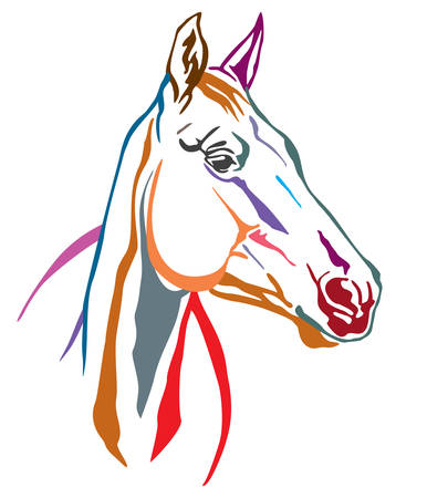 Colorful decorative contour portrait of beautiful horse, looking  in profile. Vector illustration in different colors isolated on white background. Image for logo, design and tattoo.