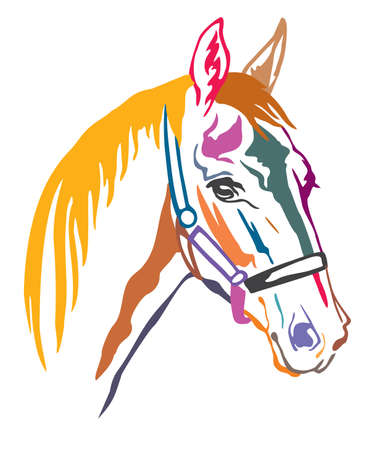 Colorful decorative contour portrait of beautiful racing horse in halter looking in profile, vector illustration in different colors isolated on white background. Image for logo, design and tattoo.