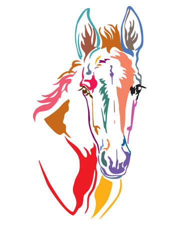 Colorful decorative contour portrait of funny foal, vector illustration in different colors isolated on white background. Image for logo, design and tattoo. 向量圖像
