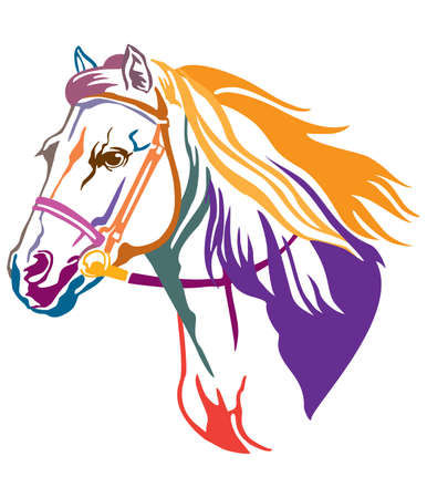 Colorful decorative contour portrait of running horse in bridle and long mane, looking  in profile. Vector illustration in different colors isolated on white background. Image for logo, design and tattoo. 向量圖像