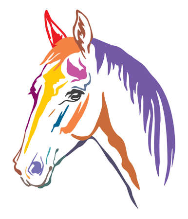 Colorful decorative contour portrait of beautiful horse with long mane, looking  in profile. Vector illustration in different colors isolated on white background. Illustration