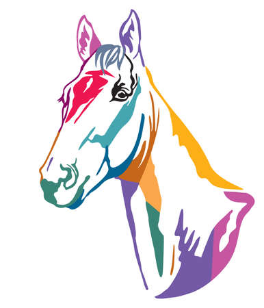 Colorful decorative contour portrait of  horse looking  in profile. Vector illustration in different colors isolated on white background.