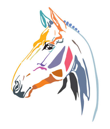 Colorful decorative contour portrait of racehorse looking  in profile. Vector illustration in different colors isolated on white background. Illustration
