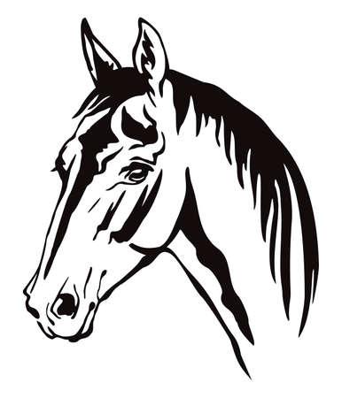 Portrait de contour monochrome décoratif de cheval avec une longue crinière à la recherche de profil, illustration vectorielle en couleur noire isolée sur fond blanc. Vecteurs