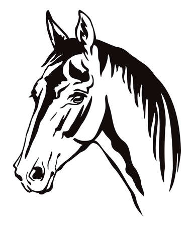 Decorative monochrome contour portrait of horse with long mane looking in profile, vector illustration in black color isolated on white background.
