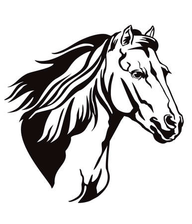 Decorative monochrome contour portrait of running horse with long mane looking in profile, vector illustration in black color isolated on white background.