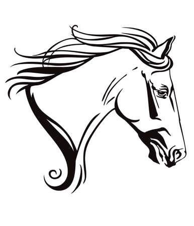 Decorativo contorno ornamentale monocromatico ritratto di cavallo in corsa con lunga criniera, guardando di profilo. Illustrazione vettoriale in colore nero isolato su sfondo bianco.