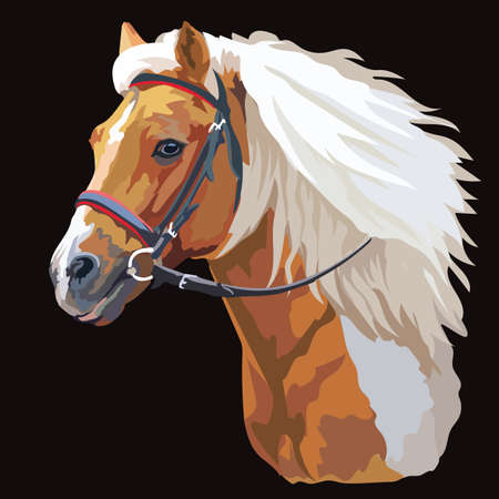 Colorful horse portrait with bridle. Horse head with long mane in profile isolated on black background. Vector colorful illustration. Retro style portrait of running horse. Stock Vector - 137876789