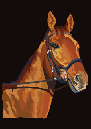 Colorful horse portrait with bridle. Chestnut horse head isolated on black background. Vector colorful illustration of horse portrait. Retro style portrait of horse. 向量圖像