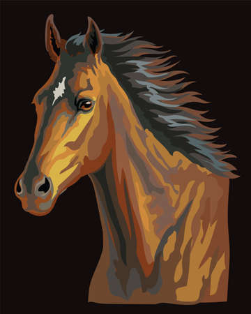 Colorful horse portrait. Bay horse head with long mane isolated on black background. Colorful vector illustration of bay horse. Retro style portrait of running horse.