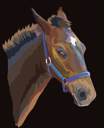 Colorful foal portrait with halter. Young horse head in profile isolated on black background. Vector drawing illustration. Retro style portrait of horse.