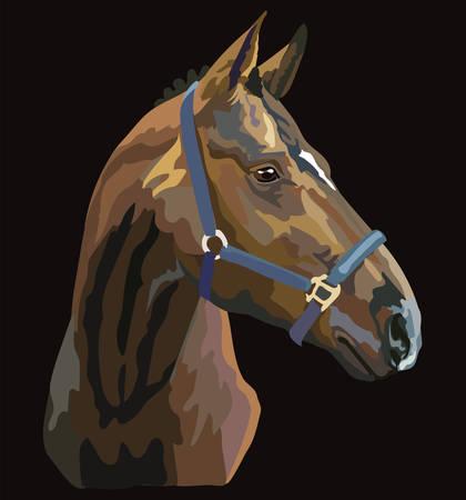 Retrato de caballo colorido con brida. Cabeza de caballo de perfil aislado sobre fondo negro. Ilustración de dibujo vectorial. Retrato de estilo retro de caballo en brida.
