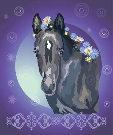 Funny black foal, vector colorful realistic illustration. Portrait of  little horse with flowers in mane isolated on blue gradient background with ornament and circles. Image for art and design