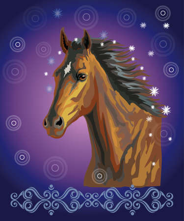 Bay horse, vector colorful realistic illustration. Portrait of running bay horse with stars in long mane isolated on dark blue gradient background with ornament and circles. Image for art and design