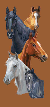Vertical postcard with horses. Colorful vector realistic portraits of horses. Group of horses isolated on brown background. Vector colorful illustration of horses for postcards, design and posters.