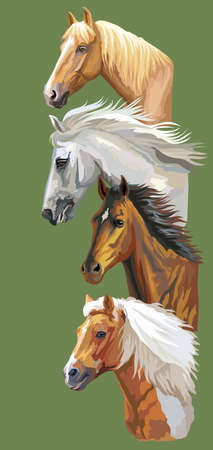 Vertical postcard with running horses. Colorful vector realistic portraits of horses in profile. Group of horses isolated on green background. Vector colorful illustration of horses for postcards, design and posters.