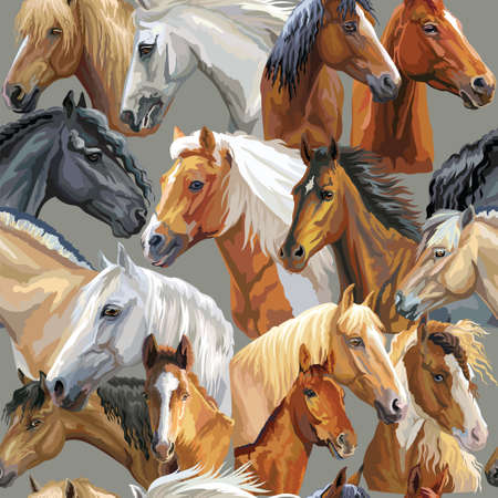 Colorful vector seamless pattern with realistic portraits of horses breeds. Vector colorful background with portraits of horses. Illustration is good for postcards, design and posters. Illustration