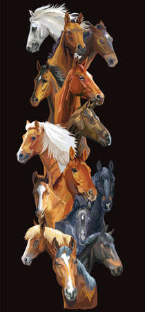 Vertical postcard with horses. Colorful vector realistic portraits of horses. Big group of horses isolated on black background. Vector colorful illustration of horses for postcards, design and posters.