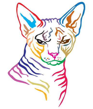 Colorful decorative portrait of angry sphinx cat, contour vector illustration in different colors isolated on white background. Image for design and tattoo.   イラスト・ベクター素材