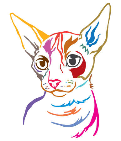 Colorful decorative portrait of Cornish Rex cat, contour vector illustration in different colors isolated on white background. Image for design and tattoo. Vetores