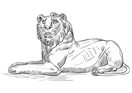 Sketch of marble lying lion statue profile view. Vector hand drawing illustration in black color isolated on white background. Graphic Element for design. stock illustration Vettoriali