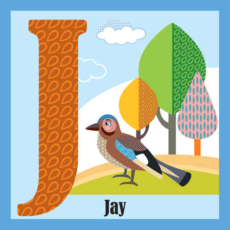 Vector cartoon flashcards of animal alphabet, letter J. Colorful cartoon illustration of letter and Jay vector character. Bright colors zoo wildlife illustration. Cute flat cartoon style. Stock illustration.