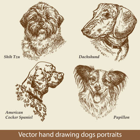 Hand drawing set of a cute dogs breeds. Dogs head isolated on beige background. Pencil, ink hand drawn realistic portrait. Animal collection. Good for print T-shirt, banner. Stock illustration