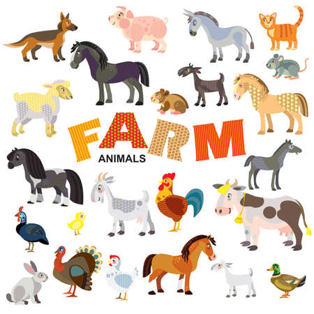 Farm animals in front view and side view large vector cartoon set in flat style isolated on white background. Vector illustration of animals for children. Great for children's designs, printed products and souvenirs.