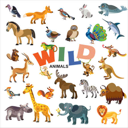 Wild animals in front view and side view large vector cartoon set in flat style isolated on white background. Vector illustration of animals for children. Great for children's designs, printed products and souvenirs.
