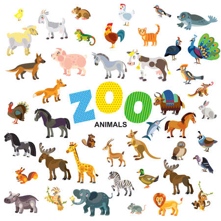 Zoo animals in front view and side view large vector cartoon set in flat style isolated on white background. Vector illustration of animals for children. Great for children's designs, printed products and souvenirs. Illustration