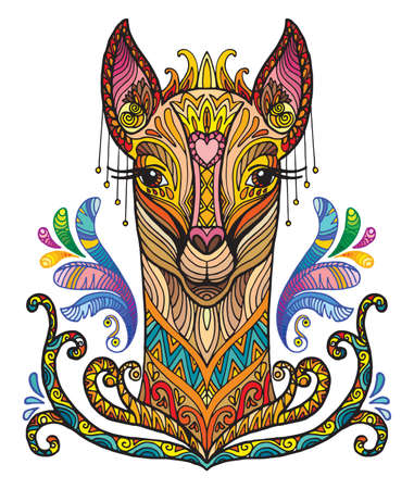 Vector decorative doodle ornamental head of lama. Abstract vector colorful illustration of lama head isolated on white background. Stock illustration for print, design and tattoo.  Illustration