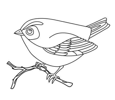Vector line art monochrome cute songbird sitting on branch. 向量圖像