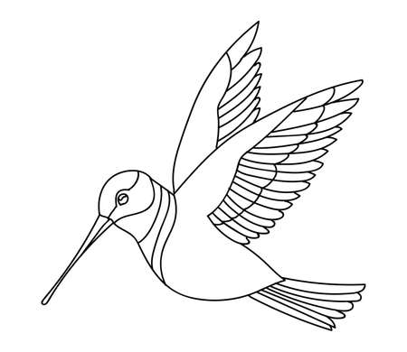 Vector line art monochrome flying humming bird. Black contour illustration isolated on white background. Stock illustration for coloring book, design, print, t-shirt, home decor.