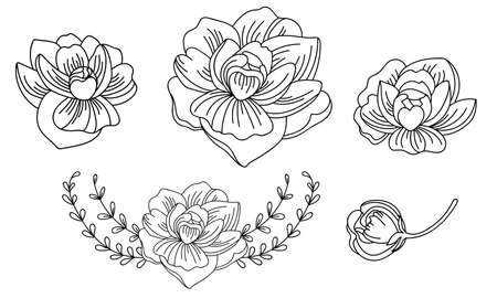 Botanical set with hand drawn line art butterfly and decorative vignettes. Vector monochrome floral template illustration for wedding invitation, vegan cafe, print, design, tattoo.