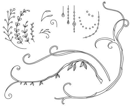 Floral botanical set with hand drawn line art meadow flowers.