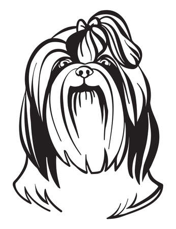 Decorative outline portrait of cute Shih Tzu dog vector illustration in black color isolated on white background. Isolated image for design and tattoo. Archivio Fotografico - 154835508