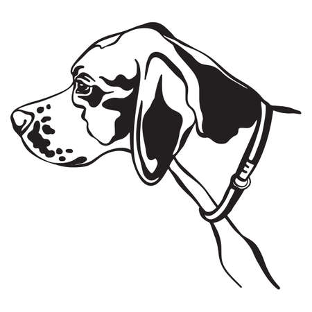 Decorative outline portrait of cute pointer dog vector illustration in black color isolated on white background. Isolated image for design and tattoo.