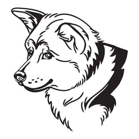 Decorative outline portrait of cute Akita inu Dog vector illustration in black color isolated on white background. Isolated image for design and tattoo. Vettoriali