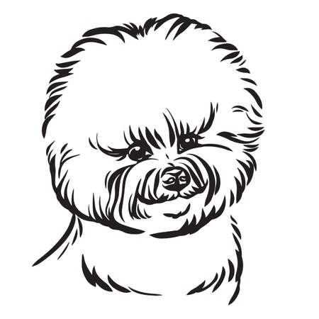 Decorative outline portrait of cute Bishon Dog vector illustration in black color isolated on white background. Isolated image for design and tattoo. Archivio Fotografico - 154835571