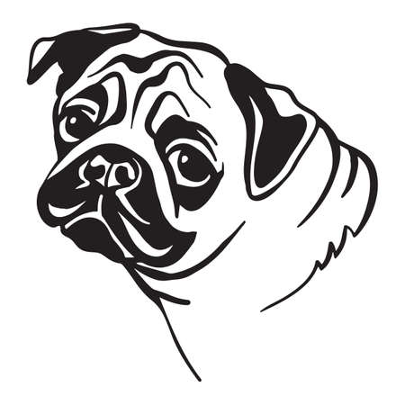 Decorative outline portrait of cute pug dog vector illustration in black color isolated on white background. Isolated image for design and tattoo.