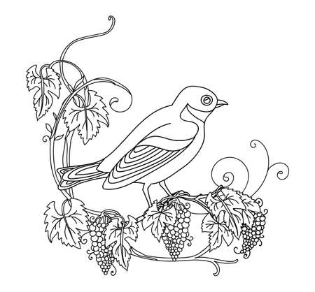Black contour cute illustration bird and grape. Vector line art illustration isolated on white. Vector hand drawn monochrome image for coloring book, wedding invitation, design, print, t shirt, home decor. Archivio Fotografico - 154772769