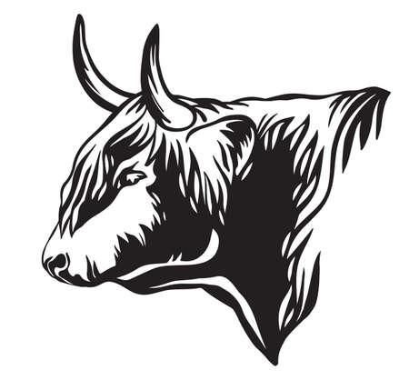 Portrait of bull