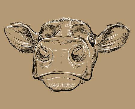 Funny head of bull drawing illustration Vettoriali