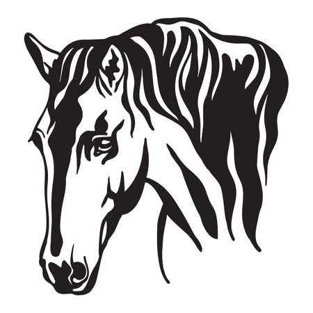 Decorative portrait of horse vector illustration in black color isolated on white background. Engraving template image for design, print and tattoo.