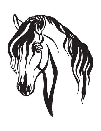 Abstract portrait of horse vector illustration in black color isolated on white background. Engraving template image for design, print and tattoo. Vettoriali